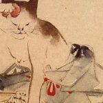 丸山遊郭 猫の食いさし