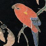 継母と顔の赤い鳥